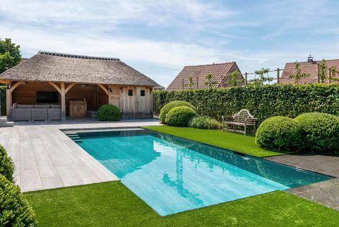 ZILVER IN DE CATEGORIE zwembaden tot 60.000€